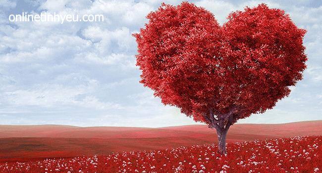 Lời chúc mừng Valentine 2