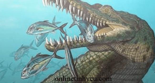 Câu chuyện về hai con cá sấu