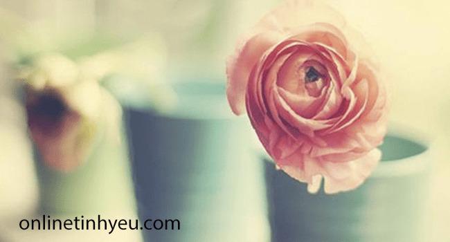 Lời chúc mừng Valentine 8