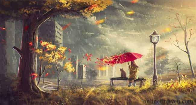 Mưa rơi giữa mùa thu