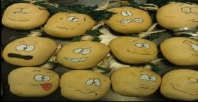 "Bao khoai tây ""oán hận"""