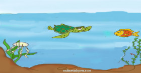 Bài học rút ra từ câu chuyện giữa cá và rùa