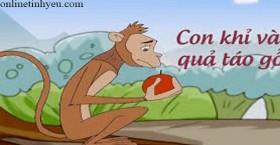 Con khỉ và quả táo gỗ