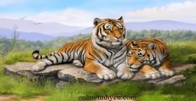 Hai con hổ có số phận khác nhau